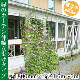 緑のカーテン 3m伸縮立掛けタイプ ワイド1800