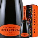 ワイン スパークリング 白 発泡 [NV]フランチャコルタ・アルマ・グラン・キュヴェ・ブリュット[ボックス付]   ベラヴィスタ イタリア ロンバルディア   750ml