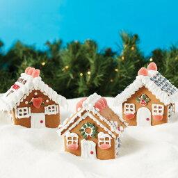 【セール品】Create A Treat ジンジャーブレッド ミニヴィレッジ<strong>キット</strong> | Gingerbread Mini Village Kit <strong>お菓子の家</strong> ヘクセンハウス クッキー ハウス クリスマス