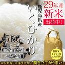 新米 29年産 鹿児島県産 イクヒカリ 5kg(5kg×1)...