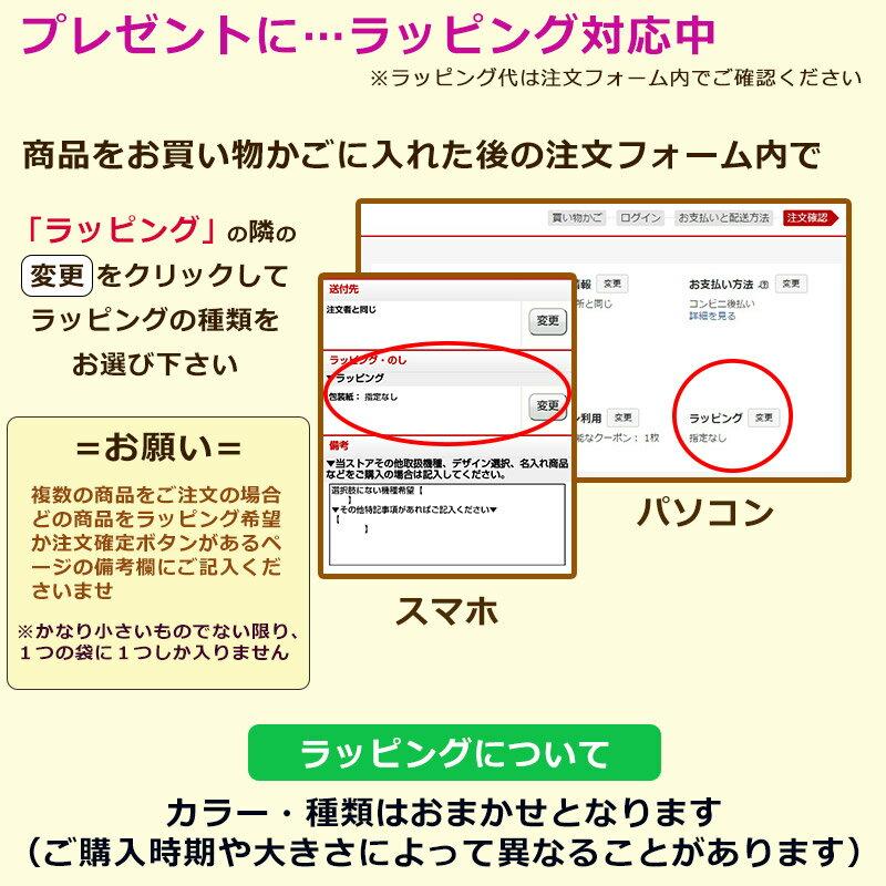 送料無料 第5世代 iPod touch Ap...の紹介画像2