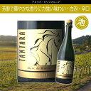 カルーセル・ブラン・ド・ブラン [2009] タンタラアメリカ カリフォルニアワイン 白ワイン スパークリング 泡 [erabell]