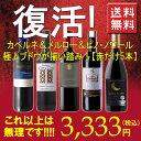 """【復活!!】【送料無料】【第11弾】美味しいデイリーワイン♪カベルネ&メルロー&ピノ・ノワール""""採算度外視""""赤ワイン飲み比べ5本セット!1本当たり666円これ以上はもう無理です・・・ワインセット チリ"""
