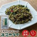 十種類のねばシャキ海藻サラダ 20g×1袋 送料無料 メール...