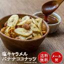 塩キャラメル バナナココナッツ 100g×1袋 バナナチップ...