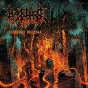 重金属硬摇滚 - Back Door To Asylum/Cerberus Millenia 【CD】