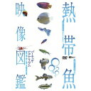 熱帯魚映像図鑑 バーチャル・アクアリウム 映像と音で愉しむ美しき熱帯魚の世界 【DVD】