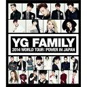 YG FAMILY/YG FAMILY 2014 WORLD TOUR:POWER IN JAPAN