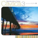 Techno, Remix, House - Ryohei/Catch the Various Catchy Cavaca 3 compiled by Ryohei 【CD】