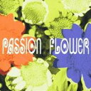 爵士蓝调 - T-SQUARE/Passion Flower 【CD】