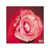 SMAP/SMAP 010TEN 【DVD】