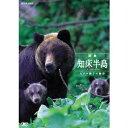 四季・知床半島 〜ヒグマ親子の物語〜 【DVD】