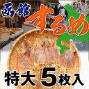 【特大5枚】 するめ スルメ)函館のするめ特大サイズ×5枚入(約250g-280g)するめいか 北海道