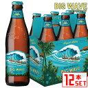 コナビール ビッグウェーブ ゴールデンエール 瓶355mlx12本 ハワイアンビール 輸入ビール