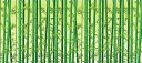 【店舗・イベント用品】【夏】【七夕】ディスプレイシート・竹林