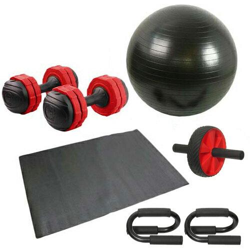 バランスボール 筋トレ 6点セット プッシュアップバー 腹筋ローラー アーミーダンベル7kg2個 レッド マット付き