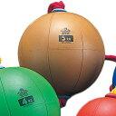 乐天商城 - ニシスポーツ NISHI スウィングメディシンボール ゴム製 5kg T5915