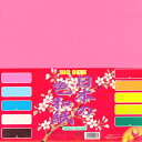 日本の色和紙  京の象 30センチ角おりがみ 大きな和紙折紙 日本の色折り紙 30センチ角オリガミ宅配便のみで発送