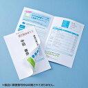 圧着ハガキ(インクジェットプリンタ・レーザープリンタ対応) JP-HKSEC14 サンワサプライ【ネコポス対応】