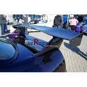楽天イーテックコマーススカイラインー R33 GTR GTS BCNR33 ENR33 BR-STYLE GTウイング 1600mm カーボン