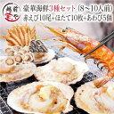 海鮮 バーベキューセット 3種 送料無料 福袋 赤エビ 1