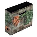 A4ファイルボックス[Verdura M] キャロット 【文房具】 ステーショナリー 【文具】 デザイン文具
