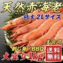 【アウトレット価格】送料無料 大型天然赤海老 1kg 楽天ラ...