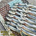 【アウトレット価格】 魚屋がガチで作った きびなご串干し 1串 冷凍