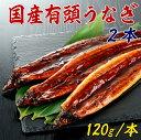 【国産 有頭うなぎ 2本 240g】岡山県産 大型鰻 【うなぎ ウナギ】【冷凍】【お歳暮】