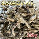 【1円】【幻の白口イワシ 250g】いりこだし 煮干し 雑魚