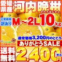 愛媛県愛南町産「河内晩柑」訳あり10kg【送料無料※一部地域除く】希少な柑橘!ジュースに絞ってもOK