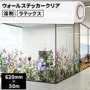 ショッピングウォールステッカー 壁・床用 ウォールステッカー クリア 620mm×50mロール【SIJ-WS02-HL】