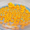 ぷかぷかアヒル大中小すくいどりイベント 157個/おもちゃ 景品 お祭り 縁日