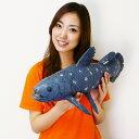 巨大生物フィギュア シーラカンス 58cm