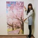 桜タペストリー 桜並木 防炎加工 L180cm / 春 装飾 飾り ディスプレイ
