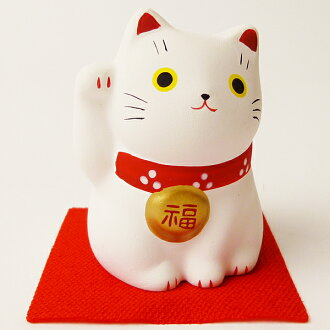 Fortune visit beckoning cat white