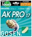 【お買い物マラソン限定ポイント5倍!3/24~3/29迄】ts708 ゴーセン ゴーセン AKプロ17 NA
