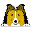 シェルティ BIG フェイス ステッカー のぞき犬/ 車 犬 カッティング シート 屋外用 グッズ シェットランド・シープドッグ 【楽ギフ_包装】