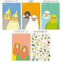 【BIRDSTORY】パスケース ◆定期入れ/小鳥/オカメインコ/セキセイインコ/ボタンインコ/ボタンインコ/フィンチ/鳥グッズ/雑貨/カードケース/