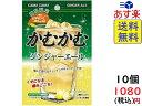 ショッピングポスト かむかむジンジャーエール 30g ×10個 賞味期限2020/06