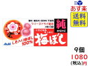 アサヒグループ食品 梅干し純ミニ 12粒(4粒×3袋)×9袋 賞味期限2021/11