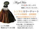 ショッピングレンタル 【レンタル版】AngelHair専用カラーチャート