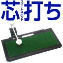 ダイヤコーポレーションチェックショットZTR−428「芯打ち」「ゴルフ練習用品」【あす楽対応】