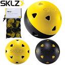 SKLZ(スキルズ)日本正規品 IMPACT GOLF BALLS(インパクトゴルフボール) 「027634」 「ゴルフスイング練習用品」 【あす楽対応】