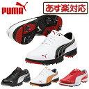 2013モデルプーマゴルフ日本正規品Puma AMP Sport XWソフトスパイクゴルフシューズ186491【あす楽対応_四国】