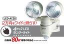 【ポイント10倍】[RITEX]LED防犯センサーライト家庭用電源専用 LEDセンサーライト 自動点...