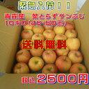 青森産 【葉とらず】サンふじりんご10キロ(46・50玉)【送料無料】