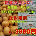 柑橘の大トロ! せとか 熊本産 熊本みかん訳あり10キロ サ...