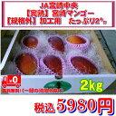 【完熟】宮崎マンゴー【規格外】加工用 たっぷり2キロ マンゴ...