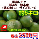 国産レモン 訳あり 熊本産 1箱5kg【送料無料】一部の地域を除く